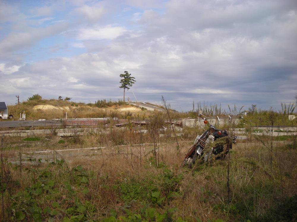 2012年10月31日 福島県相馬郡新地町埓木崎