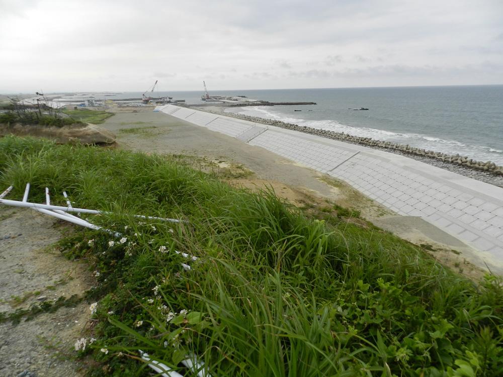 2015年7月6日 福島県相馬郡新地町埓木崎