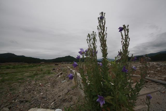 陸前高田駅前の風景