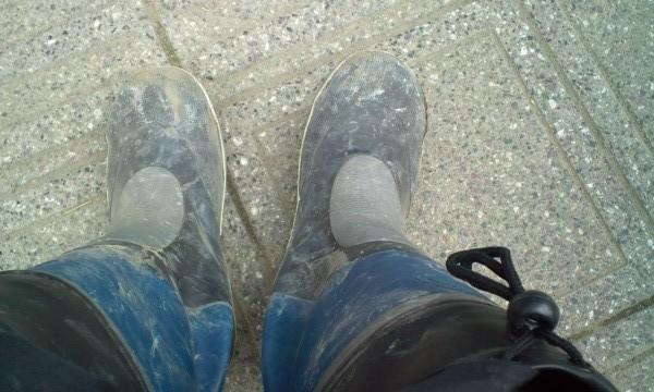 ボランティア活動に必須の長靴