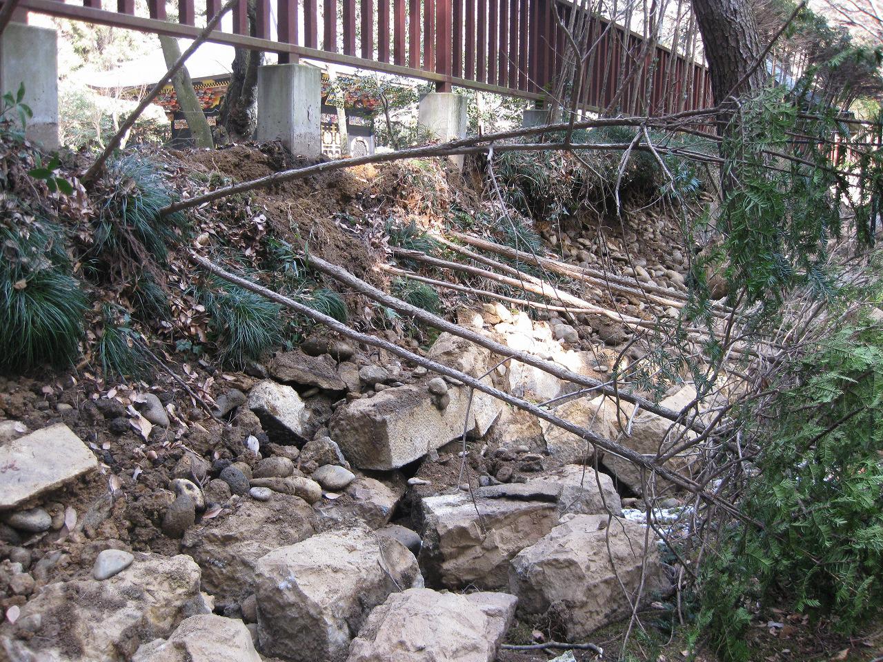 塀と同じ向きに倒れた植込み