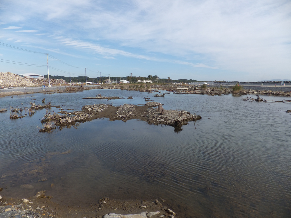 2011年10月19日 野蒜海岸