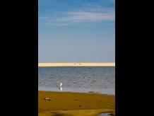 蒲生干潟 ~空と海の間・現在の景色~