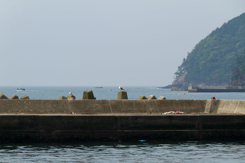 2011/7/16 石巻市蛤浜