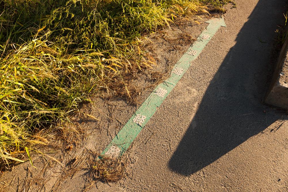 津波避難経路の矢印
