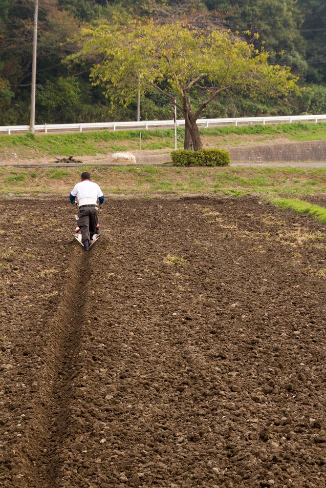 農地を耕す