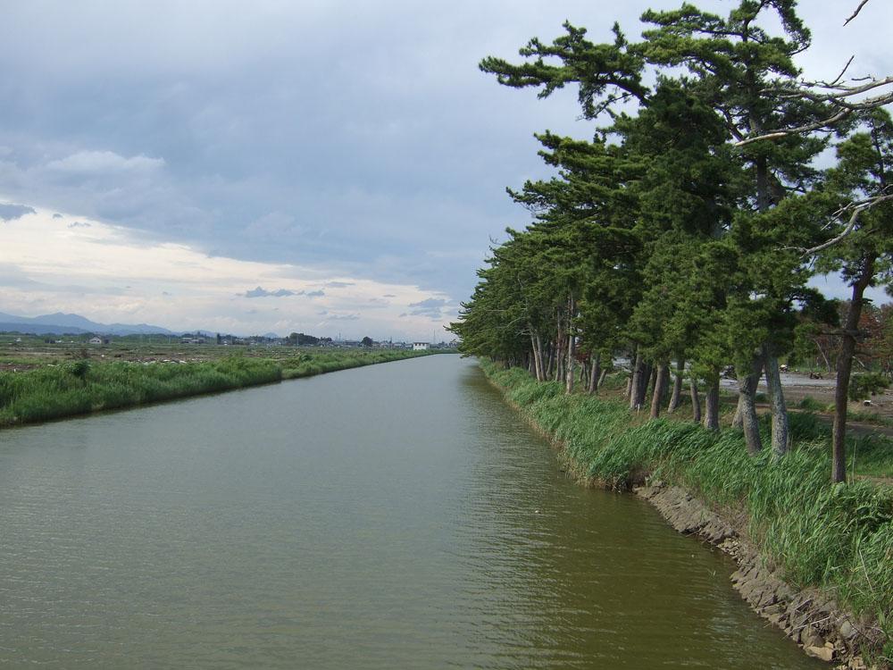 震災後の貞山運河の様子(1)