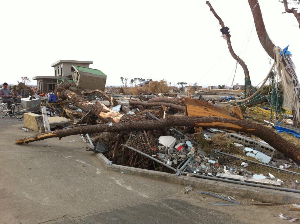 家族で津波被害地域を回る